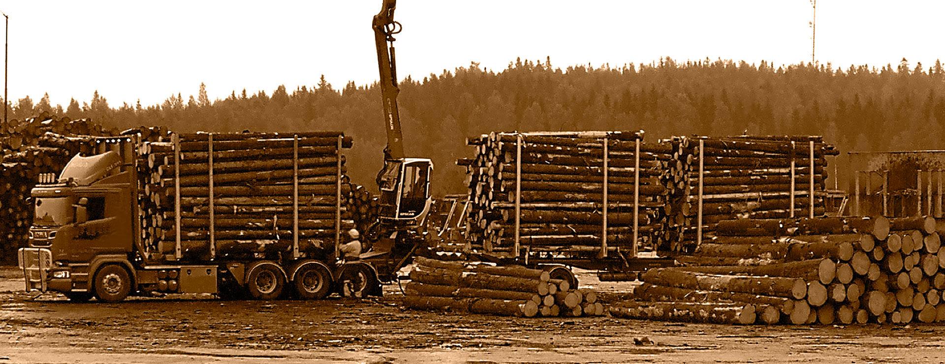 Transporting finnish wood